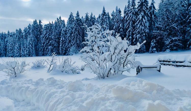 Landschaft im Winter (© Privat)