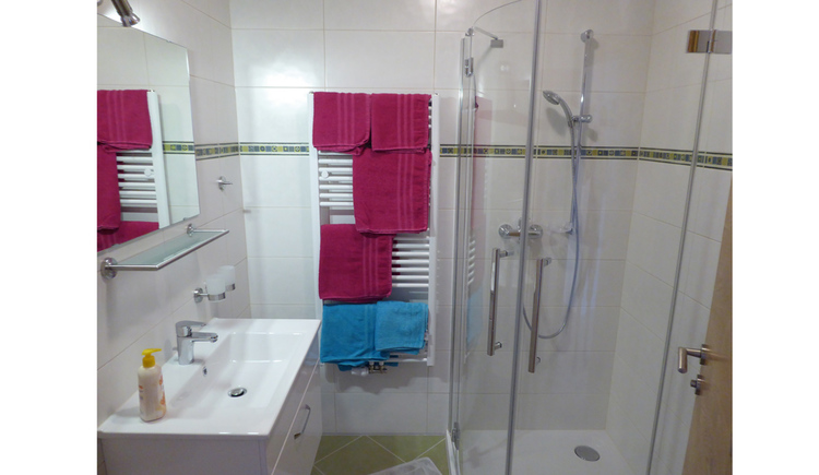 Bathroom with on the right the shower, on the backside the towelheating with towels and on the left the lavaboy and the mirror
