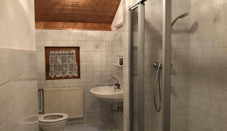 Badezimmer mit Dusche, Waschbecken und WC.