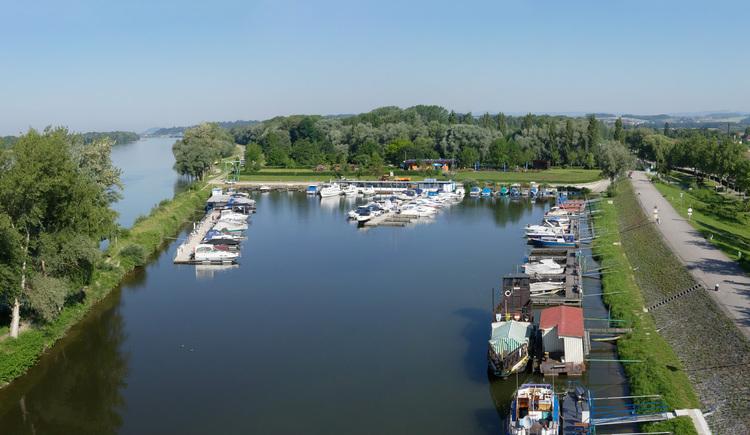 Au an der Donau, Donauradweg. (© Gerhard Ebner)