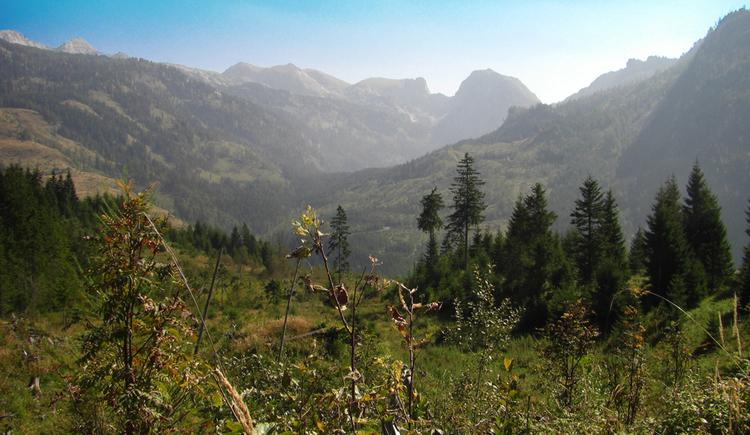 Öderntal mit Blick auf Sturzhahn und Traweng (© Gisbert Rabeder)