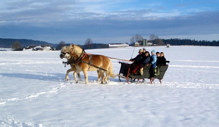 Durchs Winterwonderland der TraumArena