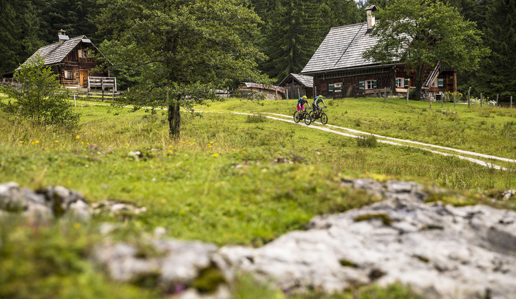 Mountain biking through the pastures of Styria and Upper Austria. (© WOM Medien GmbH, Andreas Meyer)