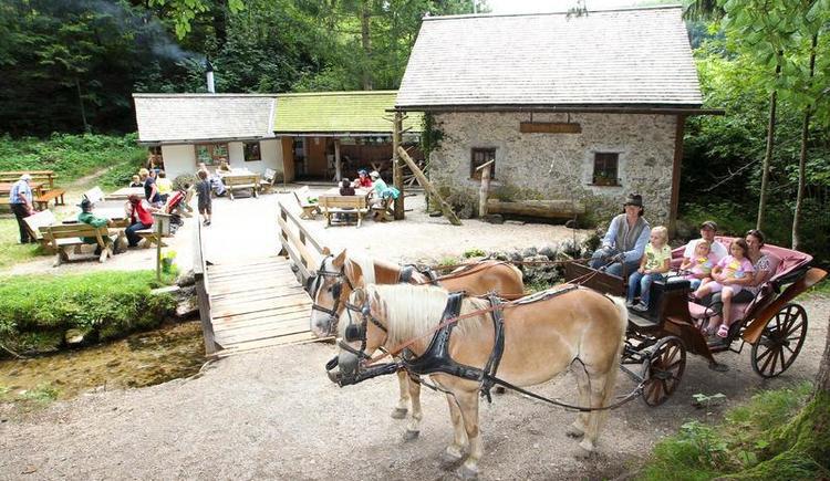 Pferdekutschenfahrt zur Rumingm\u00fchle