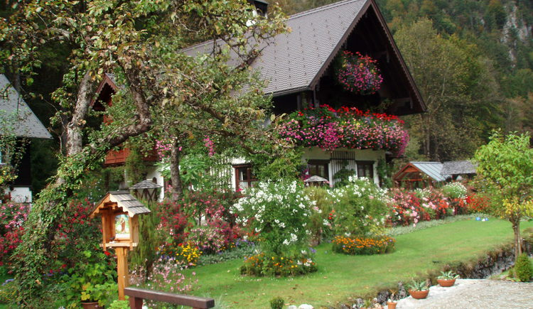 Garten. (© Blumenhaus Ebner)