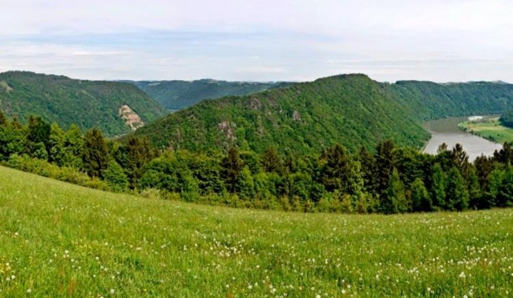 Panorama Kerschbaum (© WGD Donau Oberösterreich Tourismus GmbH/Weissenbrunner)
