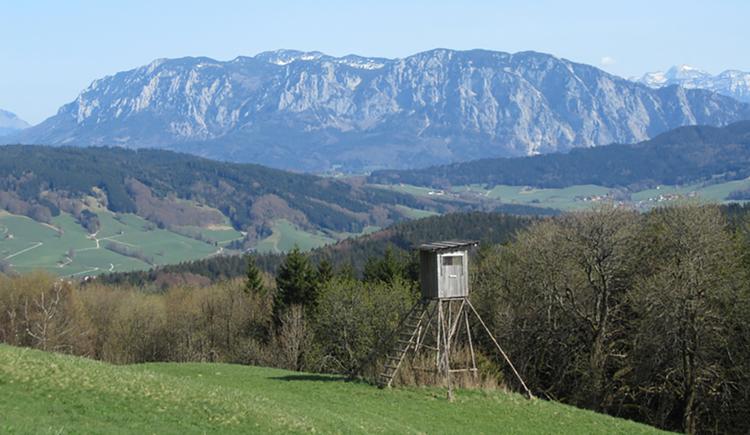 Frühlingsblick von der Hochalm in Richtung Tal von Oberwang. Im Vordergrund ein Hochstand, dahinter Wiesen und Wälder, im Hintergrund das Höllengebirge.