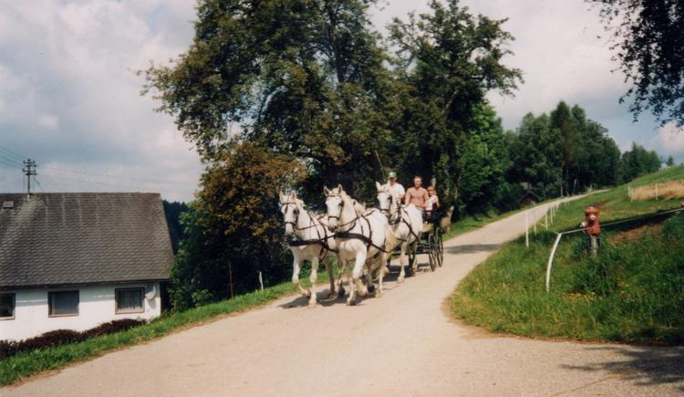 Pferdekutsche (© Löffler)
