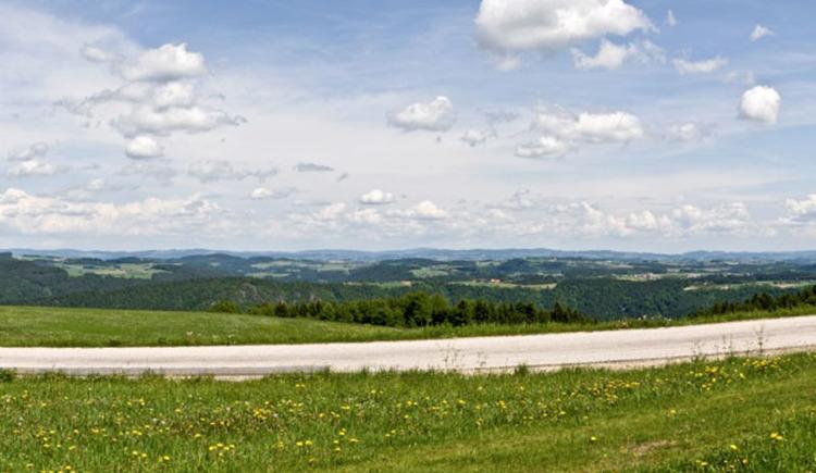 Panoramablick Paschinger Hügel (© WGD Tourismus GmbH)