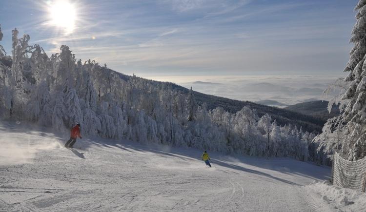 Winter im Böhmerwald (© Hochficht Bergbahnen GmbH)