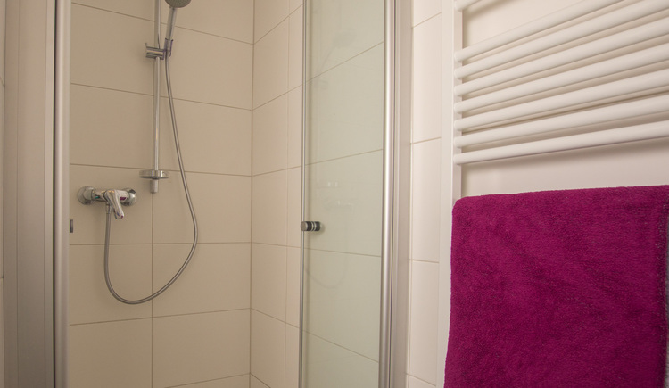 The bathroom at Haus am Bach features a shower.