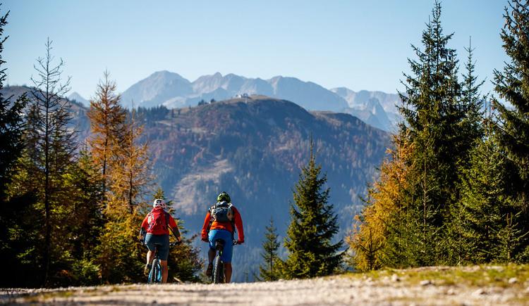 Das Panorama von Gosau beim Mountainbiken genießen