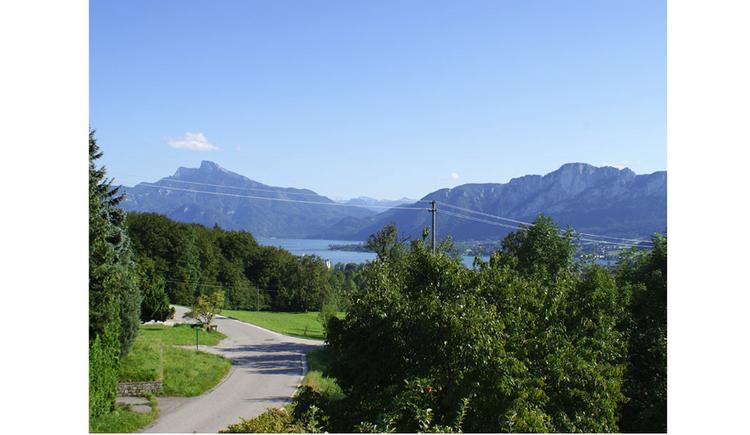 Blick auf die Bäume, Straße, im Hintergrund der See und die Berge