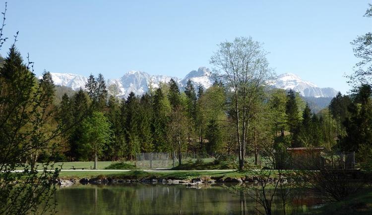 Wildpark mit Blick ins Gebirge