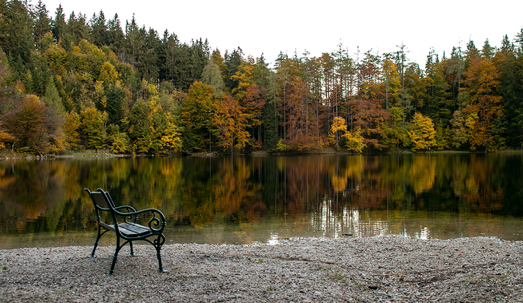 Der Eibensee im Herbst (© TVB Mondsee-Irrsee)