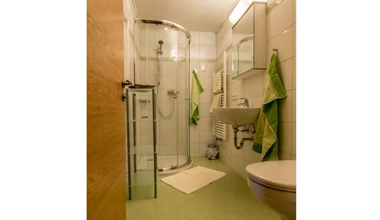 Bathroom with on the right the toilett, Bassin with mirror, in the back the towelheating and a dustbin, on the right side the shower and in front the door
