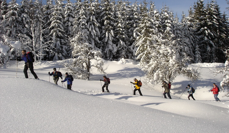 Skitouren (© Abenteuerprofis Pyhrn-Priel)