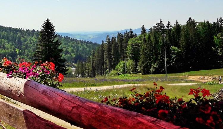 Wundervoller Weitblick in die Ferienregion Böhmerwald und ins Mühlviertel. (© Ferienregion Böhmerwald | Felhofer)