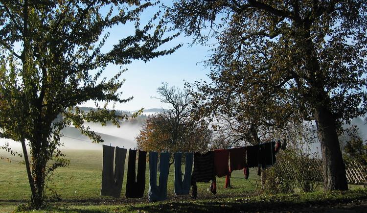 Herbstwäsche im Nebel, herbstliche Stimmung auf der Mühlviertler Alm