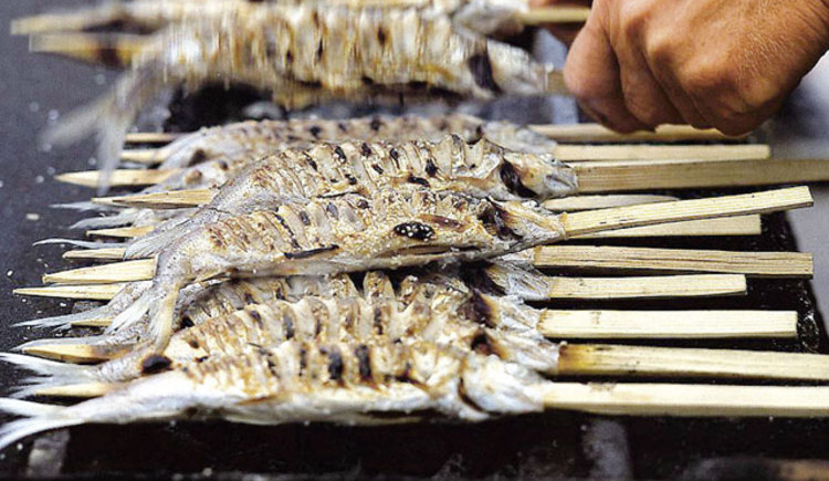 Stangelfische