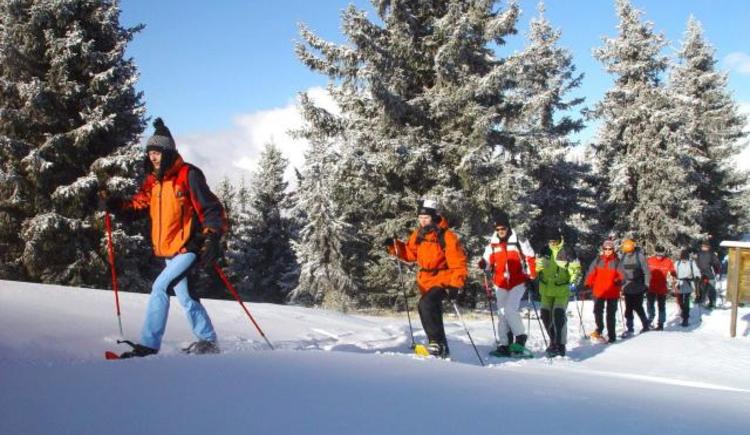 Schneeschuhwandern - Glasenberg