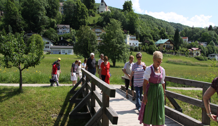 People are going on a wooden Bridge, trees, landscape