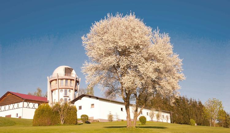 Erlebnisturm Freinberg