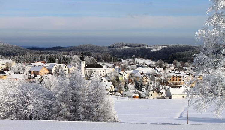 Ortsansicht Liebenau. (© Gemeidne Liebenau)