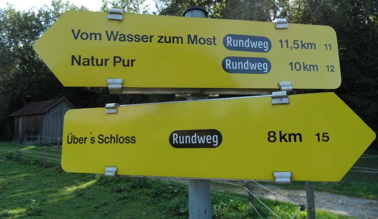 SAM_6320.JPG (© DI Dr. Silke Rosenbüchler)