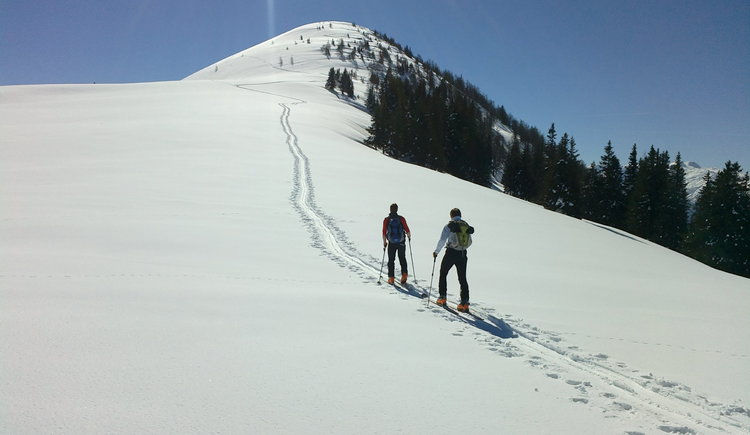 Skitour auf das Egelseehörndl, Flanke vorm Gipfel. (© WTG)