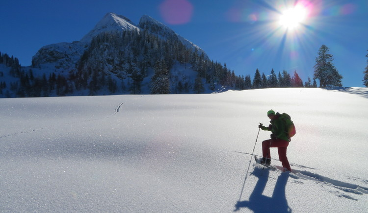 Unser neuestes Winter-Highlight: Schneeschuhe + Stöcke auf der Hütte, kostenlos für unsere Gäste während des Aufenthalts! Erleben Sie das Abenteuer Schneeschuh-Wandern und den Bergwinter auf ganz ursprüngliche Art. (© Betty Jehle, Gosau)