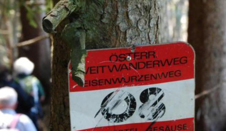 Wegmarkierung bei Diemannsdorf (© Verein BENEDIKT BE-WEG-T)