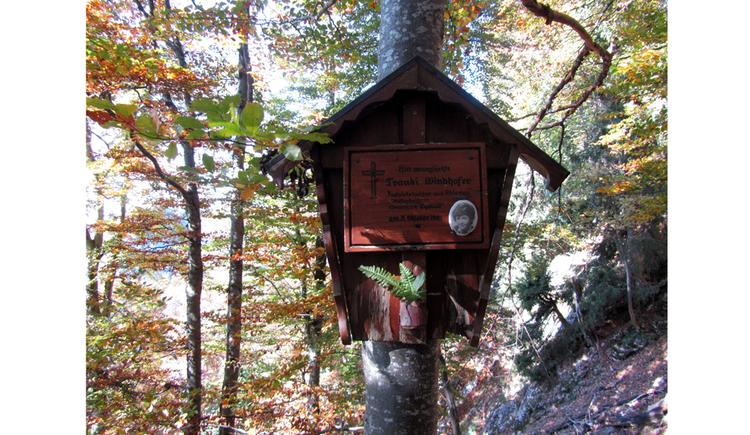 Blick auf ein Holzmartel an einem Baumstamm, im Hintergrund Bäume