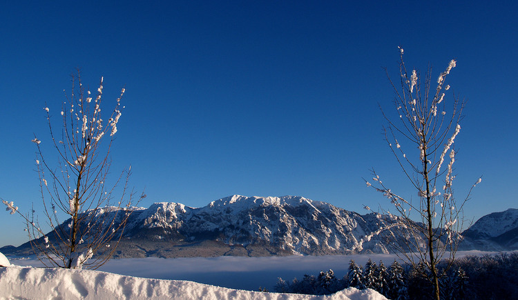 Winterlandschaft am Attersee. (© Ferienregion Attersee)