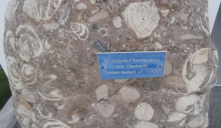 Fossilien- und Mineralienschau Gamsjäger in Bad Goisern