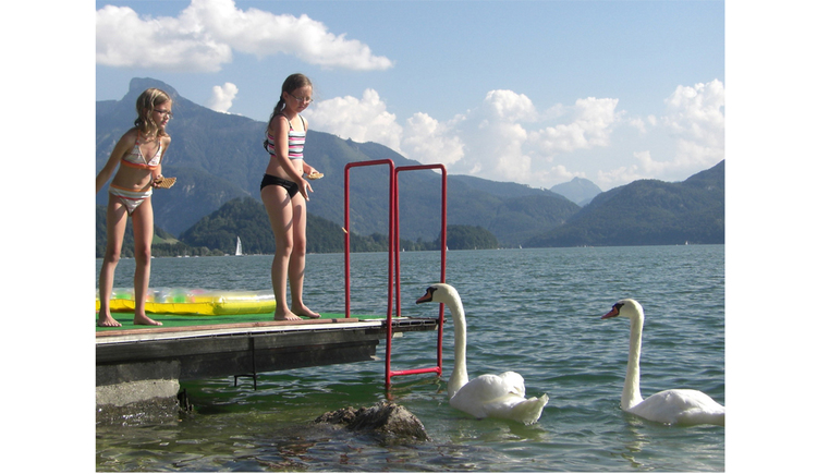 Children stand on the footbridge and feed the swans in the lake, in the background the mountains