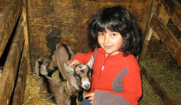 Ziegen, Bauernhof, Kitz , Kinder
