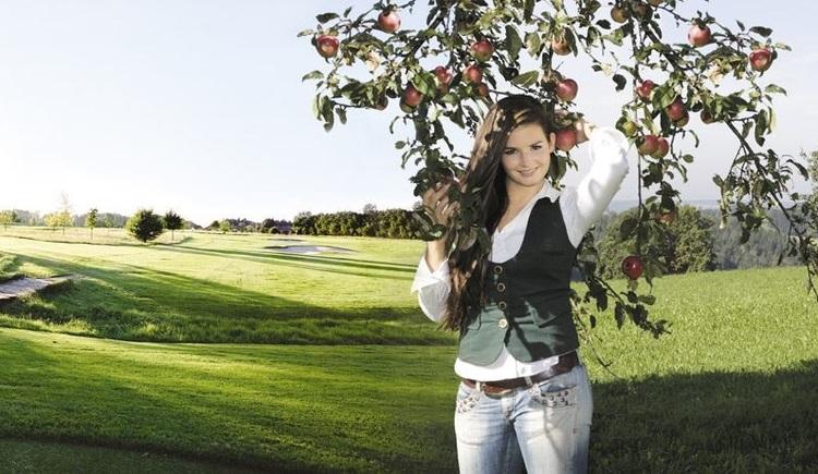 Obstbaumschnittkurs in Kirchheim im Innkreis