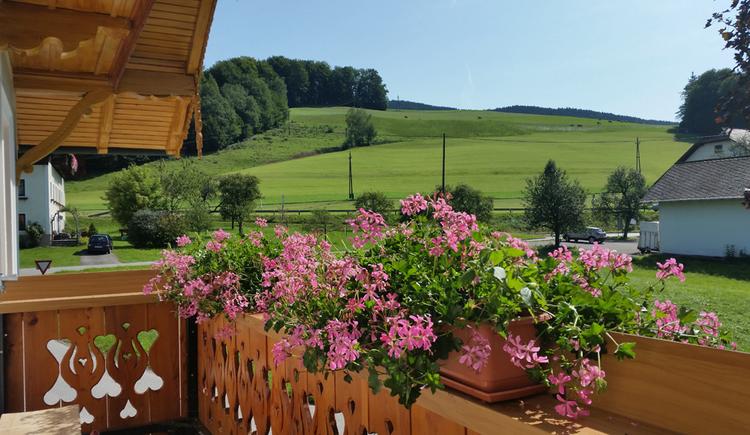 Balkon, Blumen, im Hintergrund Landschaft