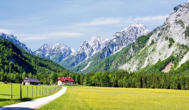 Panorama Baumschlagerreith