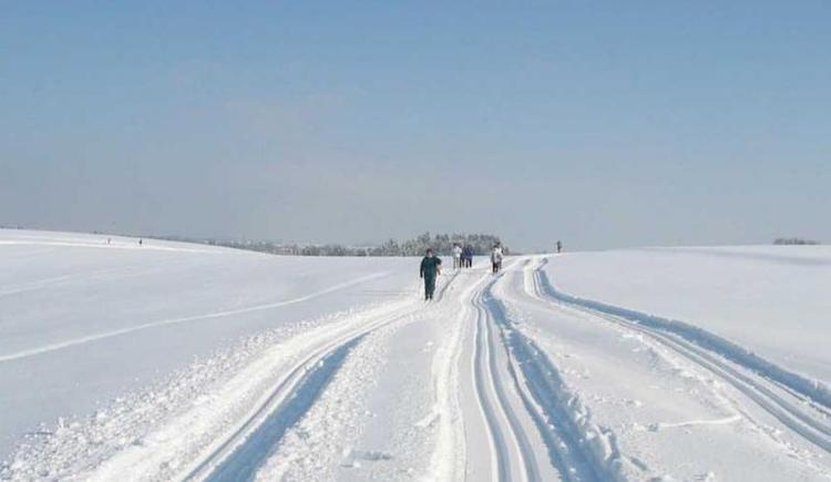 Langlaufen in Natternbach (© Vianovis)