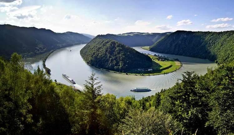Schlögener Schlinge - Donau (© Donau OÖ/Weissenbrunner)