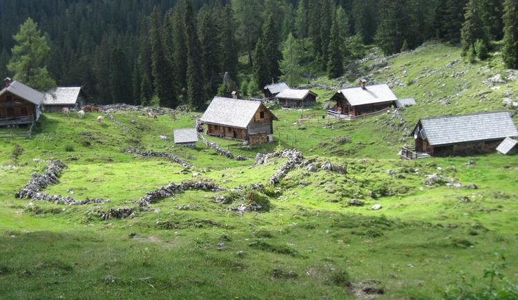 Beim BergeSeen Trail Etappe 11 kommen Sie vorbei an der Schartenalm in Gosau. (© Gisbert Rabeder)