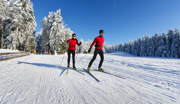 Traumhafte Loipen im Nordischen Zentrum - Einstieg Schöneben. Parallel- und Skatingspur.