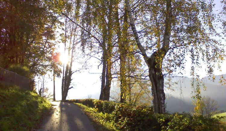 Joggingstrecke ins obere Dorf