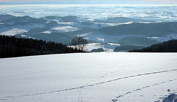 Traumhafte Ausblicke finden Sie auf diesem Winterwanderweg.