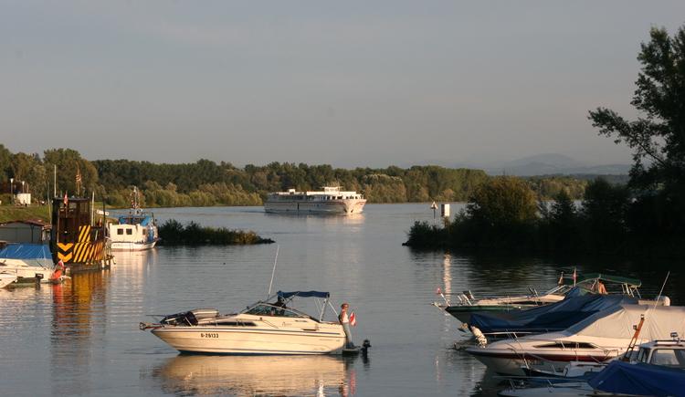 Au an der Donau, Sportboothafen. (© Gerhard Ebner)