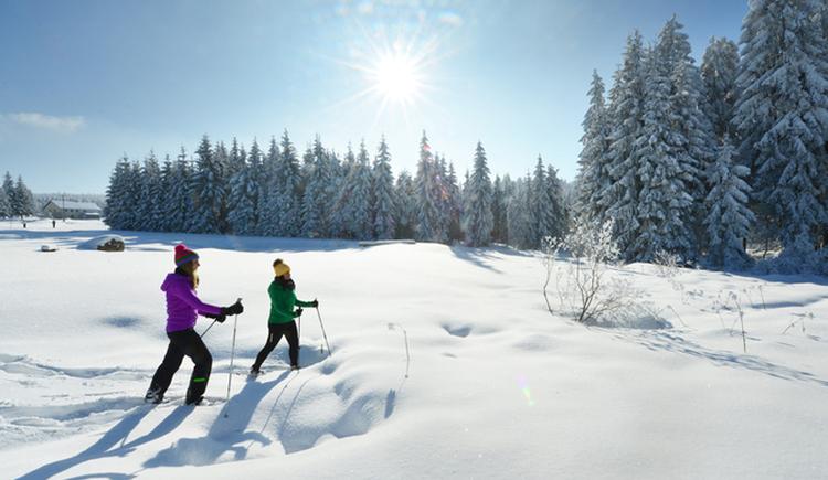 Winterwandern (© ©OÖ.Tourismus/Röbl)