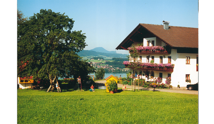Side the house with balcony and flowers, in the foreground meadow, in the background the lake and the mountains