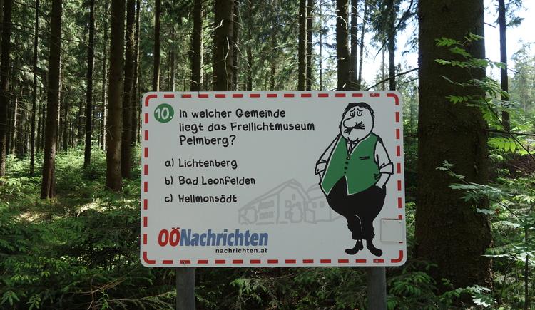 #10 (© Johann Mülleder)